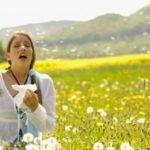 Alivia los síntomas de la alergia con Equinácea fitoconcentrado.