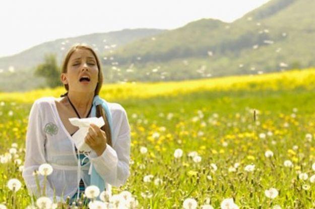 aliviar síntomas alergia con Equinácea
