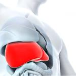 Depura el organismo con Desmodens Extracto Glicolico