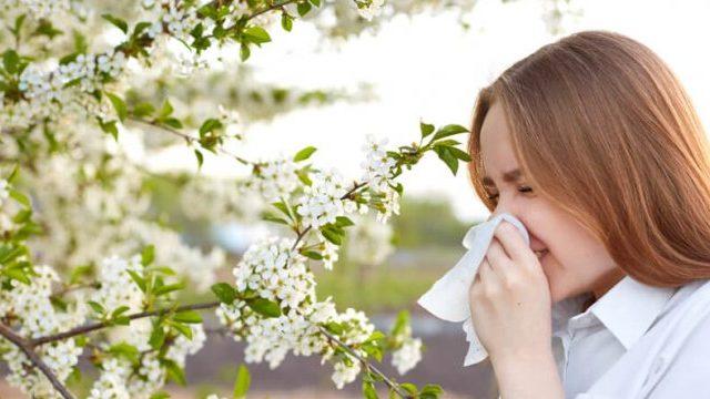 Alivia y mejora los síntomas de la alergia