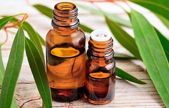 Vista previa del titulo SEO:Mejora tu bienestar con aceite de eucalipto